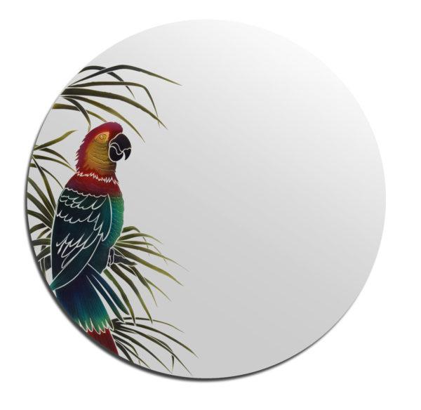 miroir perroquet